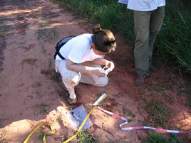 Pati Medici collecting tapir footprints in the Atlantic Forests of Brazil.